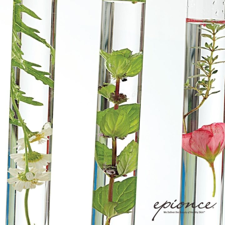 Glass tubes filled with water and plants